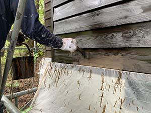 嬬恋村 別荘 木部外壁塗装 上塗り